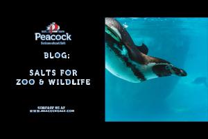 Salts for Zoo & Wildlife