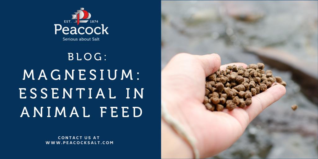 Magnesium: Essential in Animal Feed